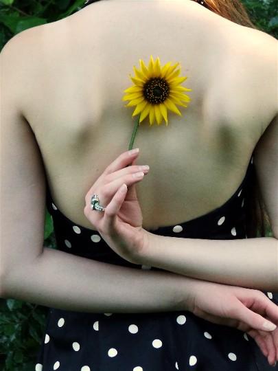 Beautiful_Sunflower_by_karaonstage