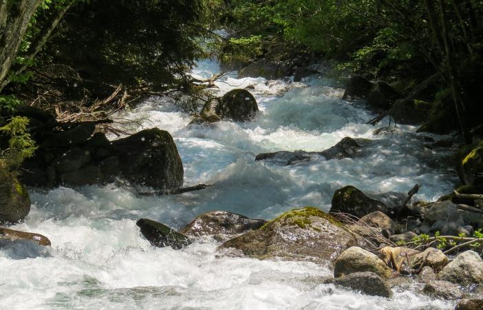 nature-1241830_1280